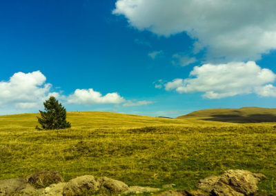 Creativ webmedia foto peisaj