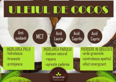 Creativwebmedia portofoliu ulei de cocos